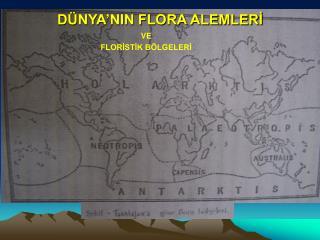 DÜNYA'NIN FLORA ALEMLERİ