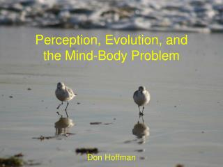 Perception, Evolution, and the Mind-Body Problem