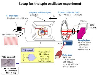 Setup for the spin oscillator experiment