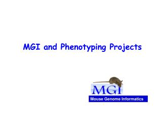 MGI and Phenotyping Projects