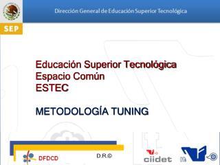 Educación Superior Tecnológica Espacio Común ESTEC METODOLOGÍA TUNING