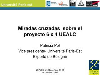 Miradas cruzadas  sobre el proyecto 6 x 4 UEALC