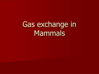 Gas exchange in Mammals