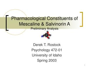 Pharmacological Constituents of Mescaline & Salvinorin A Preliminary Analysis
