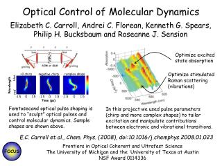 Optical Control of Molecular Dynamics