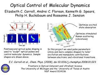 Optical Control of Molecular Dynamics