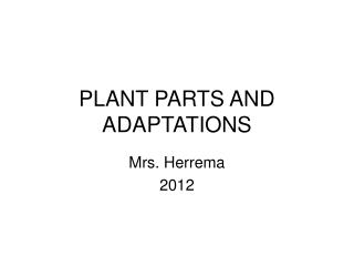 PLANT PARTS AND ADAPTATIONS