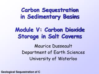 Carbon Sequestration in Sedimentary Basins Module V: Carbon Dioxide Storage in Salt Caverns