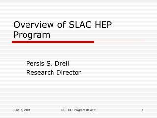 Overview of SLAC HEP Program