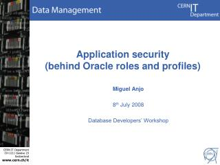 Application security (behind Oracle roles and profiles)