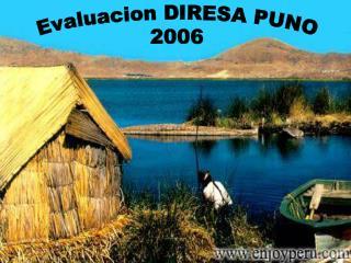 Evaluacion DIRESA PUNO 2006