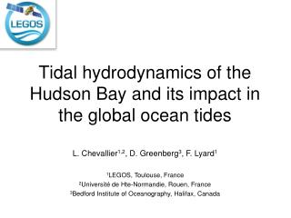 Tidal hydrodynamics of the Hudson Bay and its impact in the global ocean tides