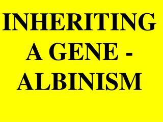 INHERITING   A GENE - ALBINISM