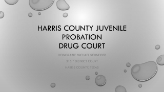 Harris County Community Profile