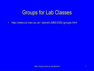 Groups for Lab Classes