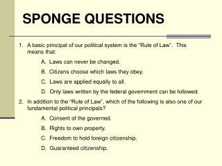 SPONGE QUESTIONS