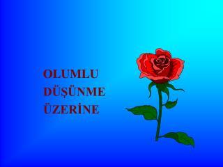 OLUMLU D S NME  ZERINE