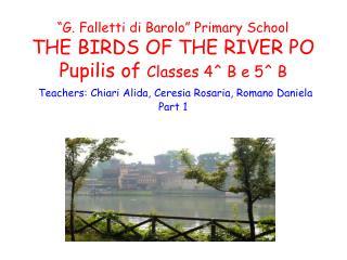 THE RIVER PO IL FIUME PO