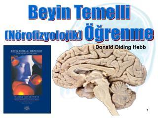 Beyin Temelli (Nörofizyolojik)  Öğrenme