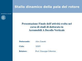 Presentazione Finale dell'attività svolta nel corso di studi di dottorato in