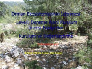 Orman Ekosistemlerinin İzlenmesi  Level1 Deneme Alanı Kurulum öncesi Faaliyetler