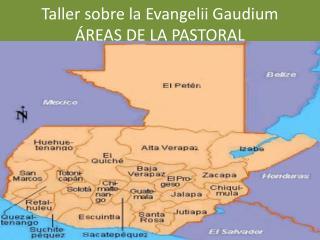 Taller sobre la  Evangelii Gaudium ÁREAS DE LA PASTORAL