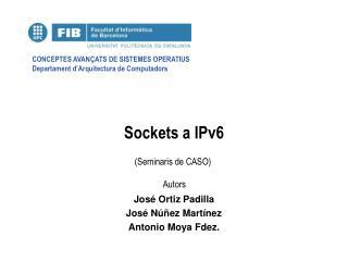 Sockets a IPv6