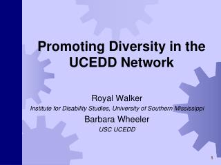 Promoting Diversity in the UCEDD Network