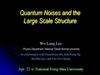 Quantum Noises and the Large Scale Structure