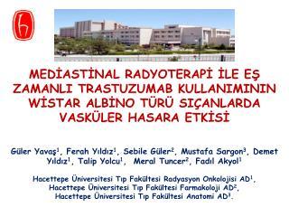 Güler Yavaş 1 , Ferah Yıldız 1 , Sebile Güler 2 , Mustafa Sargon 3 , Demet
