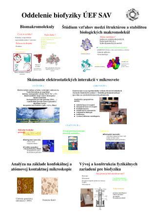Oddelenie biofyziky  Ú EF SAV
