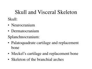 Skull and Visceral Skeleton