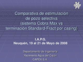 Departamento de Ingeniería Yacimiento Agua del Cajón CAPEX S.A.