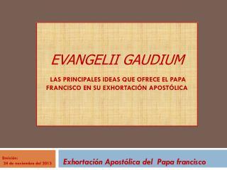 Exhortación Apostólica del  Papa francisco