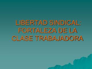 LIBERTAD SINDICAL:  FORTALEZA DE LA CLASE TRABAJADORA