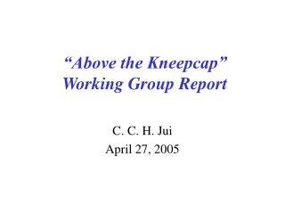 """Above the Kneepcap"" Working Group Report"