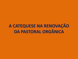 A CATEQUESE NA RENOVAÇÃO DA PASTORAL ORGÂNICA
