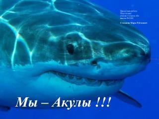Мы – Акулы !!!