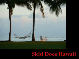 Skid Does Hawaii