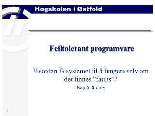Feiltolerant programvare