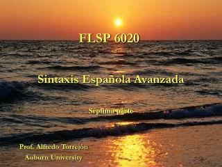 FLSP 6020
