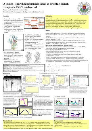 A switch-1 hurok konformációjának és orientációjának vizsgálata FRET módszerrel
