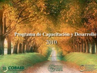 Programa de Capacitaci n y Desarrollo de Habilidades