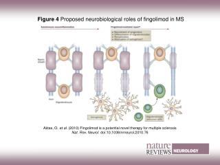 Figure 4  Proposed neurobiological roles of fingolimod in MS