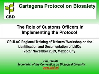The Role of Customs Officers in Implementing the Protocol  GRULAC Regional Training of Trainers  Workshop on the Identif