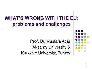 WHAT�S WRONG WITH  THE  EU:  problems and challenges