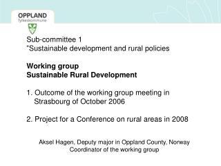 Aksel Hagen, Deputy major in Oppland County, Norway Coordinator of the working group