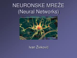 NEURONSKE MRE �E (Neural Networks)