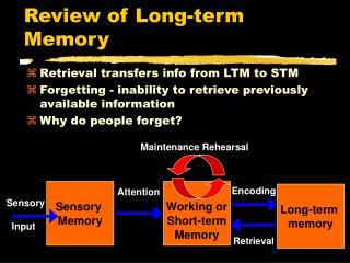 Review of Long-term Memory