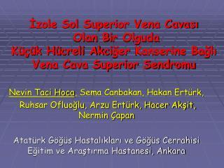 Nevin Taci Hoca , Sema Canbakan, Hakan Ertürk,